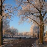 Weg voor het huis in de winter